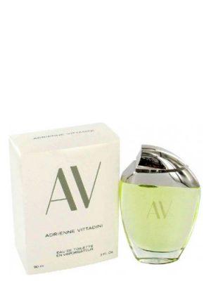 AV Adrienne Vittadini für Frauen