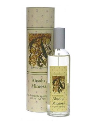 Absolu Mimosa Provence & Nature für Frauen und Männer