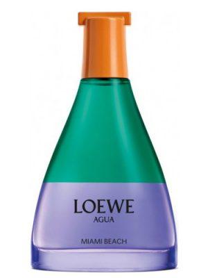 Agua Miami Beach Loewe für Frauen und Männer