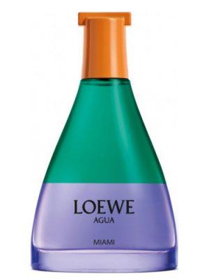 Agua Miami Loewe für Frauen und Männer