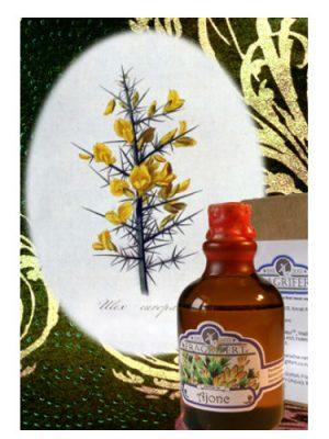 Ajonc Fragrifert Parfumeur für Frauen und Männer