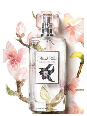 Almond Flower Ninel Perfume für Frauen