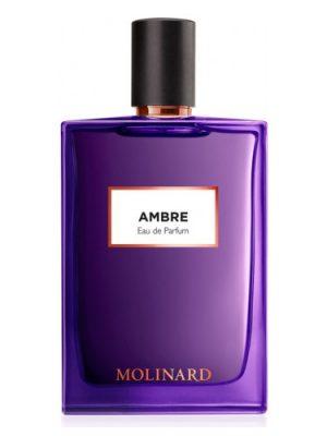 Ambre Eau de Parfum Molinard für Frauen und Männer
