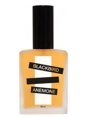 Anemone Blackbird für Frauen und Männer