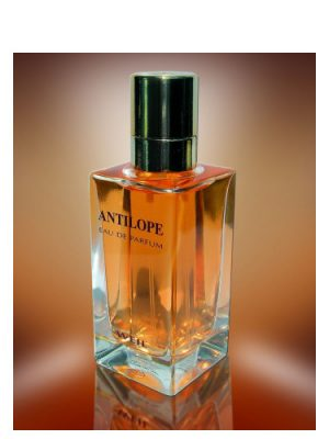 Antilope Weil für Frauen