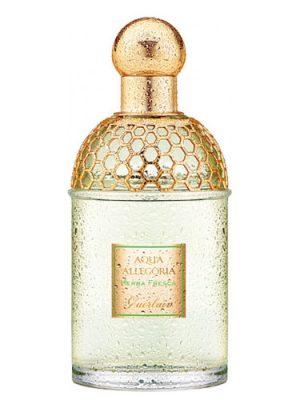 Aqua Allegoria Herba Fresca Guerlain für Frauen und Männer