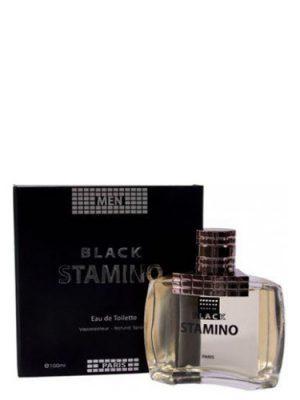 Black Stamino Prime Collection für Männer