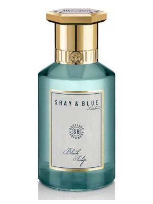 Black Tulip Shay & Blue London für Frauen und Männer