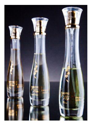 Blanc Fragrances of Wine für Frauen
