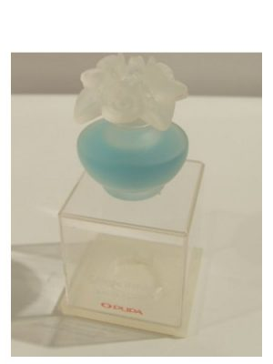 Bleu Ciel Pupa für Frauen