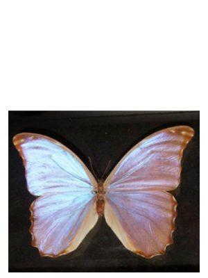 Butterfly Bud Parfums für Frauen
