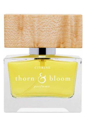 Citrine Thorn & Bloom für Frauen und Männer