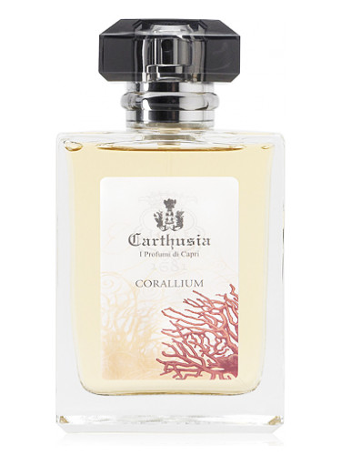 Corallium Carthusia für Frauen und Männer
