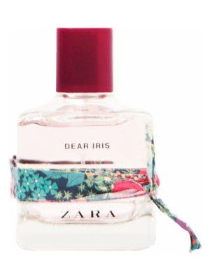 Dear Iris Zara für Frauen