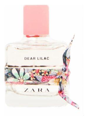Dear Lilac Zara für Frauen
