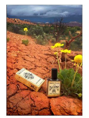 Desert Thunderstorm Solstice Scents für Frauen und Männer