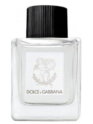 Dolce&Gabbana Perfume for Babies Dolce&Gabbana für Frauen und Männer