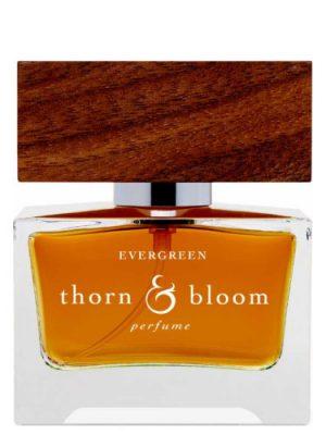 Evergreen Thorn & Bloom für Frauen und Männer