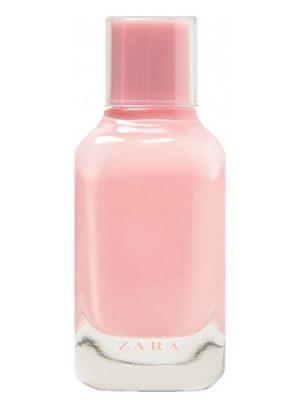 Fizzy Pink Zara für Frauen