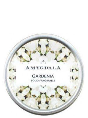 Gardenia Amygdala für Frauen und Männer
