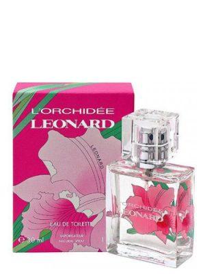 L'Orchidee Leonard für Frauen
