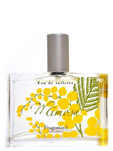 Mimosa Fragonard für Frauen