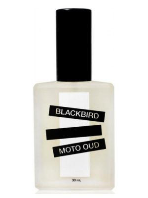 Moto Oud Blackbird für Männer