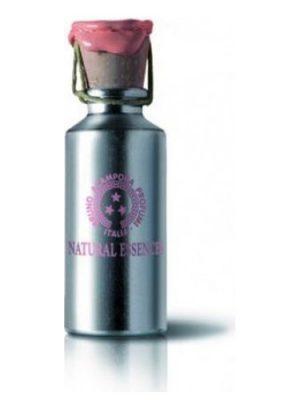 Musc Perfume Oil Bruno Acampora für Frauen
