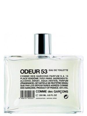 Odeur 53 Comme des Garcons für Frauen und Männer