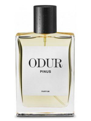 Pinus ODUR für Frauen und Männer