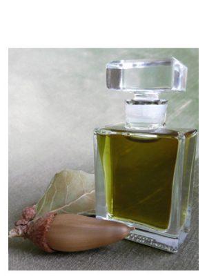Q Roxana Illuminated Perfume für Frauen und Männer