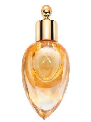 Richwood Perfume Extract Xerjoff für Frauen und Männer