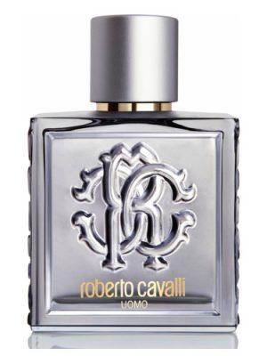 Roberto Cavalli Uomo Silver Essence Roberto Cavalli für Männer