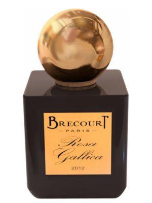Rosa Gallica Brecourt für Frauen und Männer