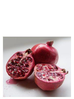 Rouge Pomegranate Bud Parfums für Frauen