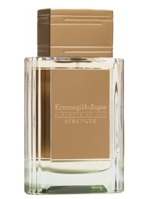 Strength Ermenegildo Zegna für Männer