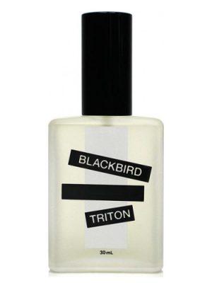 Triton Blackbird für Frauen und Männer