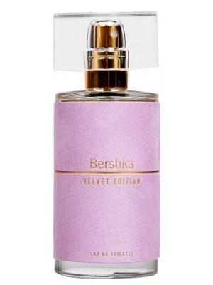 Velvet Edition Bershka für Frauen
