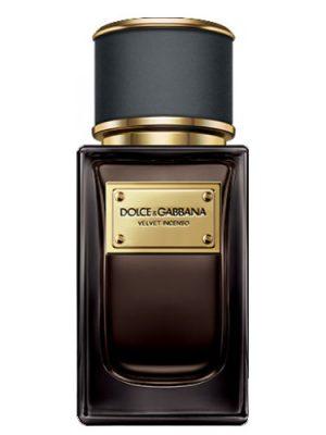 Velvet Incenso Dolce&Gabbana für Männer