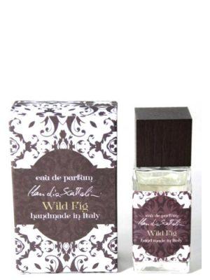 Wild Fig Claudia Scattolini für Frauen und Männer