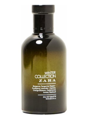 Winter Collection Zara für Männer