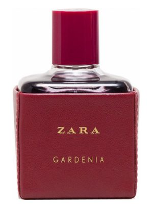 Zara Gardenia 2016 Zara für Frauen