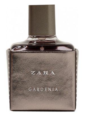 Zara Gardenia 2017 Zara für Frauen