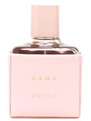 Zara Orchid 2016 Zara für Frauen
