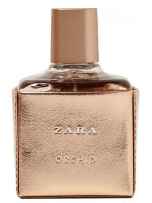 Zara Orchid 2017 Zara für Frauen